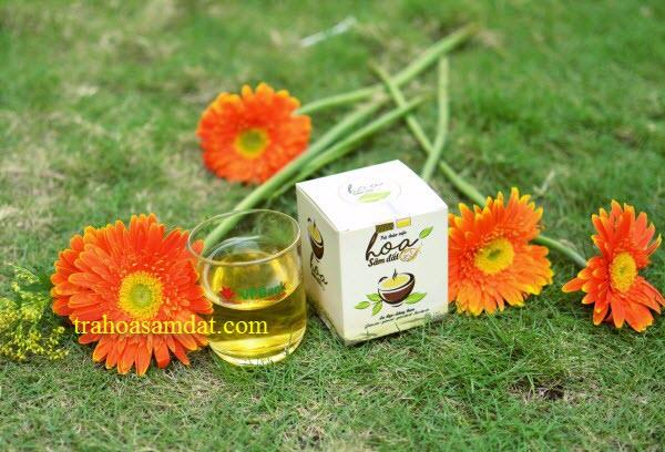 trà thảo mộc hoa sâm đất 1